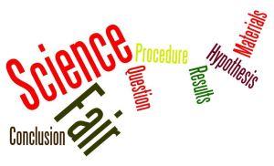 Science_Fair_9
